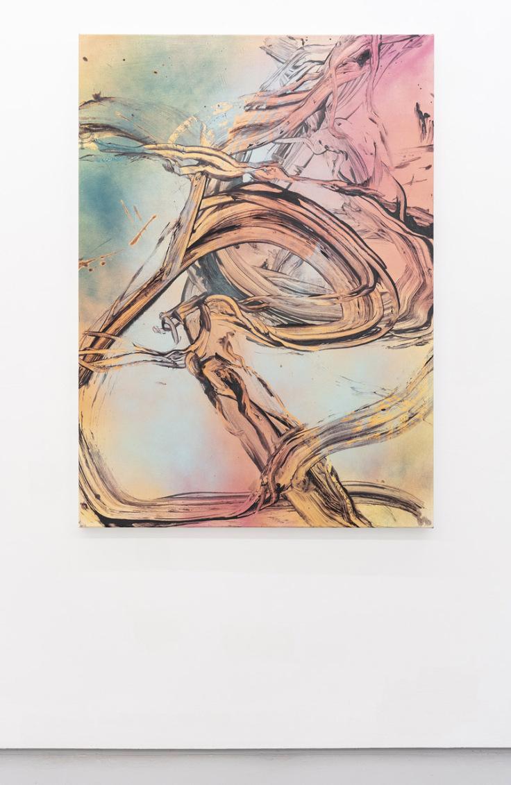 Judy-Millar-Cloud-Rider-2018